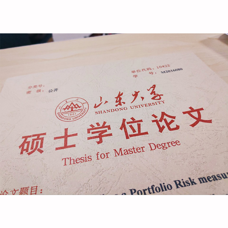 shandong university ranking
