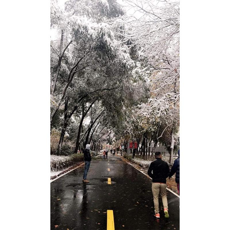 xinjiang medical university china