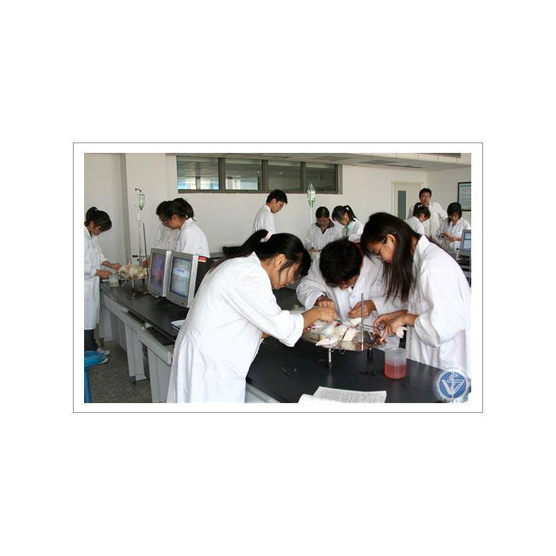 qualification for mbbs admission