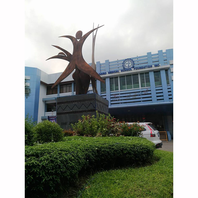 davao medical school foundation courses offered